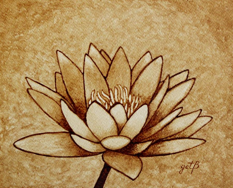 coffee painting water lilly blooming georgeta blanaru