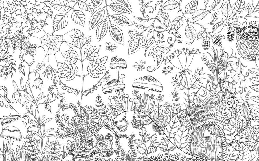 coloring books mrdeyo - Secret Garden Coloring Pages